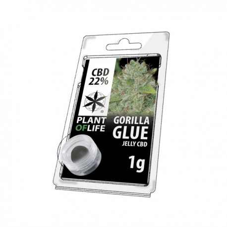 Jelly CBD GORILA GLUE 22% 1G