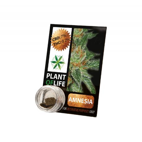 Résine CBD AMNESIA 3,8% 1G Plant of Life