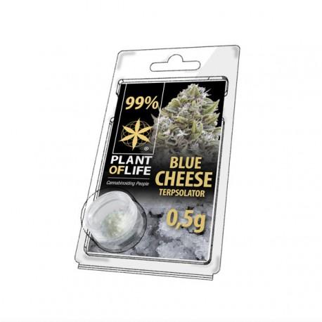 Terpsolator Blue Cheese 99% CBD - 500mg