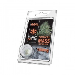 Terpsolator Critical Mass 99% CBD - 100mg