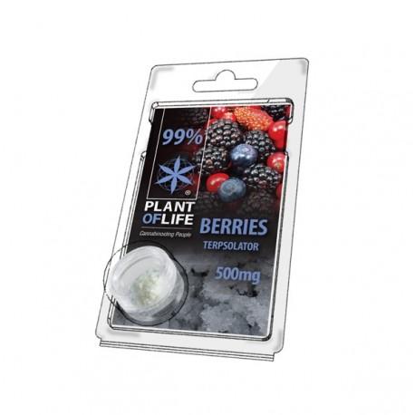 Terpsolator Berries 99% CBD - 500mg