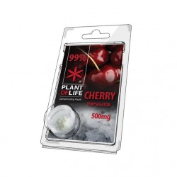 Terpsolator Cherry 99% CBD - 500mg