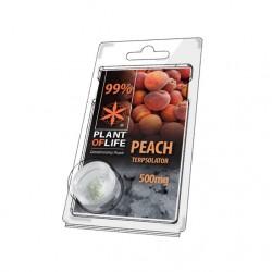 Terpsolator Peach 99% CBD - 500mg