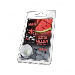 Terpsolator Watermelon 99% CBD - 500mg